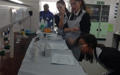 Chemistry Festival success for science students